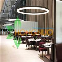 Hotel Lighting Project Circular Ring LED Pendant High quality
